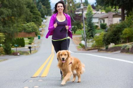How to Exercise With Your Pet